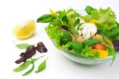 Gesunder vegetarischer Salat über Weiß lizenzfreie stockfotografie