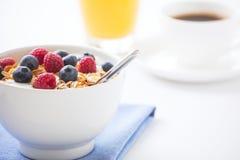 Gesundes Frühstück mit muesli, frischer Frucht, Orangensaft und cof Stockbild