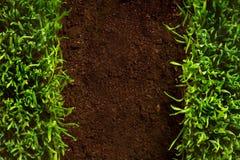 Gesundes Gras der Kunst, das im Bodenmuster wächst Stockbilder
