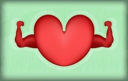 Gesundes Herz auf grünem Hintergrund Stockbilder