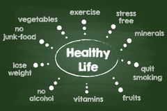Gesundes Lebensstil-Diagramm Lizenzfreies Stockbild