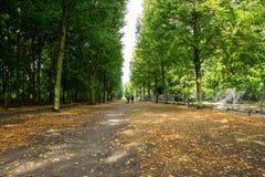 Gesundes Lebensstilkonzept Tiergarten-Park mit üppiger Flora und gehenden Leuten Herbstnatur in Berlin-Hintergrund stockbild