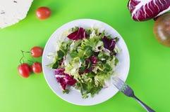 Gesundes Nahrungskonzept, grüner frischer Salat mit Tomaten, chee lizenzfreie stockfotos