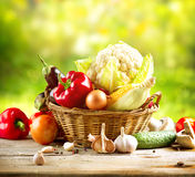 Gesundes organisches Gemüse Lizenzfreies Stockbild