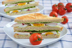Gesundes Sandwich Lizenzfreie Stockbilder