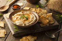 Gesundes selbst gemachtes sahniges Hummus stockfotos