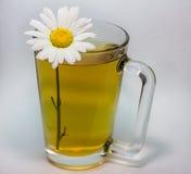 Gesundes und würziges Getränk Lizenzfreies Stockbild