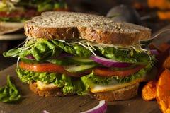 Gesundes vegetarisches Veggie-Sandwich stockbild