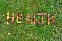 Gesundheit, Name von Blättern Lizenzfreies Stockfoto