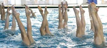 Gesynchroniseerd het zwemmen detail stock fotografie