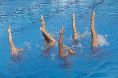 Gesynchroniseerde zwemmers Stock Fotografie