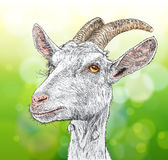 Get royaltyfri illustrationer