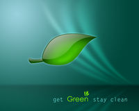 Get Green Stay Clean Royalty Free Stock Photography