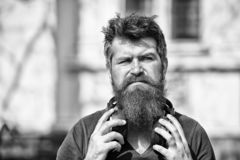 Get music subscription. Excellent music in his playlist. Enjoy free songs everyday. Man bearded hipster with headphones. Listening music. Hipster enjoy high stock photography