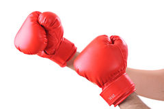 Get ready for a fight Royalty Free Stock Image