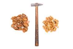 Get ready to eat some nuts Royalty Free Stock Images