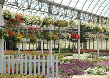 Get Ready to Plant!. A place for a gardener to dream in! A greenhouse full of beautiful plants perfect to beautify home and garden Stock Photos