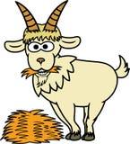 Get som äter Hay Cartoon Animal Character stock illustrationer