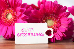 Get well soon. Pink flowers and card with lettering get well soon stock images