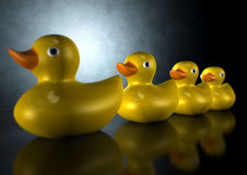 Get Your Ducks In A Row Stock Photo
