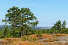 Geta, Aland海岛,芬兰 免版税库存图片