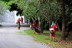 Getarnte Laubsauger, die im Park, Singapur arbeiten Stockfotos