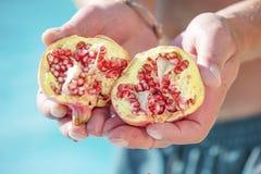 Geteilter organischer Granatapfel vom Baum Stockfoto
