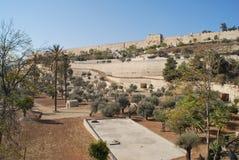 Gethsemane庭院耶路撒冷 免版税库存图片