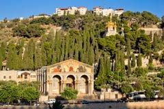 Gethsemane, и церковь всех наций в Иерусалиме стоковые изображения rf