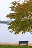 Getijbekken en Thomas Jefferson Memorial bij de ochtend, Washington DC Royalty-vrije Stock Afbeelding