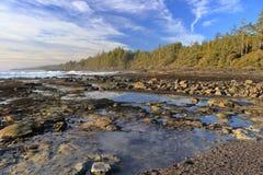 Getijdepools bij Botanisch Strand in Avondlicht, Juan de Fuca Marine Park, het Eiland van Vancouver royalty-vrije stock fotografie