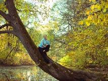 Getontes Bild einer einsamen Frau, die in einem Baum sitzt Stockfoto