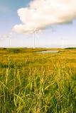 Getontes langes Gras und bogland mit Windkraftanlagen Stockfotos