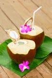 Getränk-Kokosnuss-Wasser, Milch Diät Nahrung, Hydratation Vitamine lizenzfreie stockfotografie