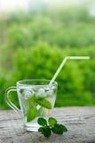 Getränk mit Zitrone und Minze Stockbilder