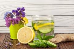 Getränk mit Zitronengurkenminze und -ingwer Lizenzfreie Stockfotos