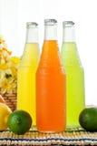 Getränke in den Flaschen Stockfotografie