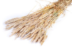 Getreide Stockfotos