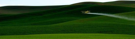Getreide-Abstauben Stockfoto