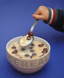 Getreide auf dem Frühstück Stockfotografie