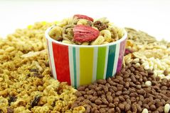 Getreide blättert zum Frühstück ab Stockbild