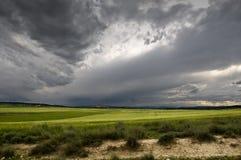 Getreide-Felder Lizenzfreies Stockfoto