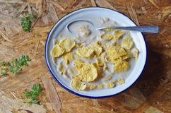 Getreide mit Milch Lizenzfreie Stockfotografie