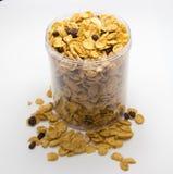 Getreide mit Rosine und Nuss Stockfotografie