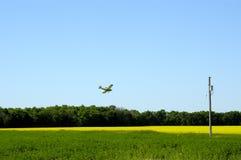 Getreide-Staubtuch Stockfoto