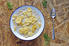 Getreide zum Frühstück Lizenzfreie Stockfotos