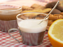 Getreidebiskuite, Pampelmuse und eine Tasse Tee oder Milch Lizenzfreies Stockbild