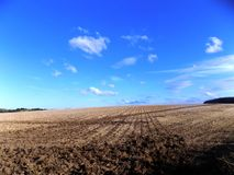 Getreidefeld nahe Crookham, Northumberland, England Lizenzfreies Stockbild