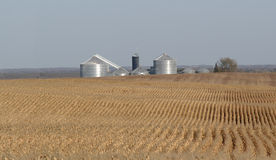 Getreidefeld-umgebender Bauernhof Lizenzfreie Stockbilder