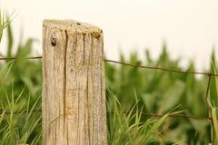 Getreidefeld-Zaun Post Ontario Farm Lizenzfreie Stockfotos